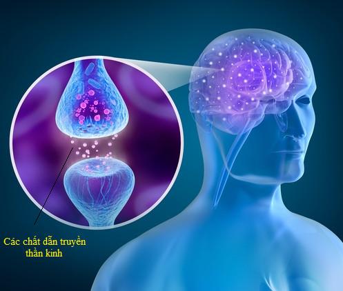 Tìm hiểu về bệnh Parkinson và phương pháp điều trị
