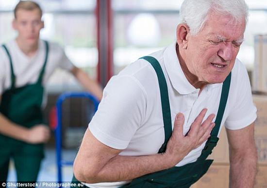 Tóc bạc nhiều nguy cơ mắc bệnh tim mạch càng cao.